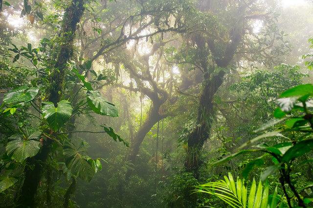 Ist das Reisen in Costa Rica sicher?